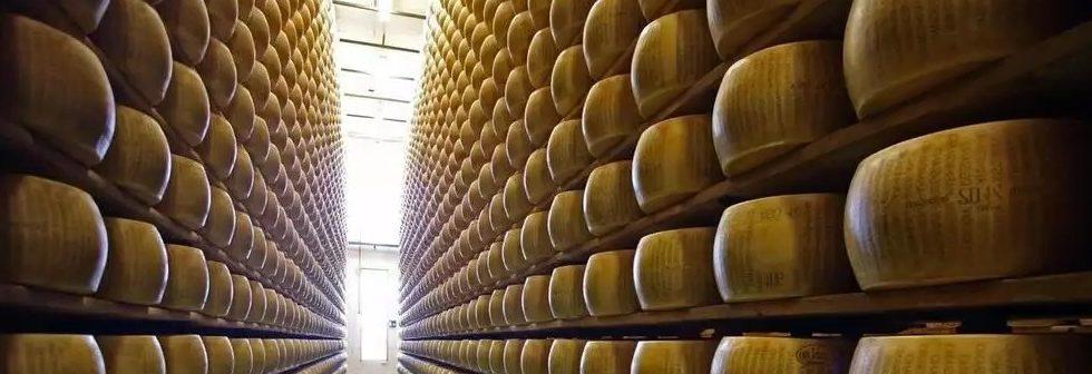Production de fromage
