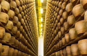Production de parmesan